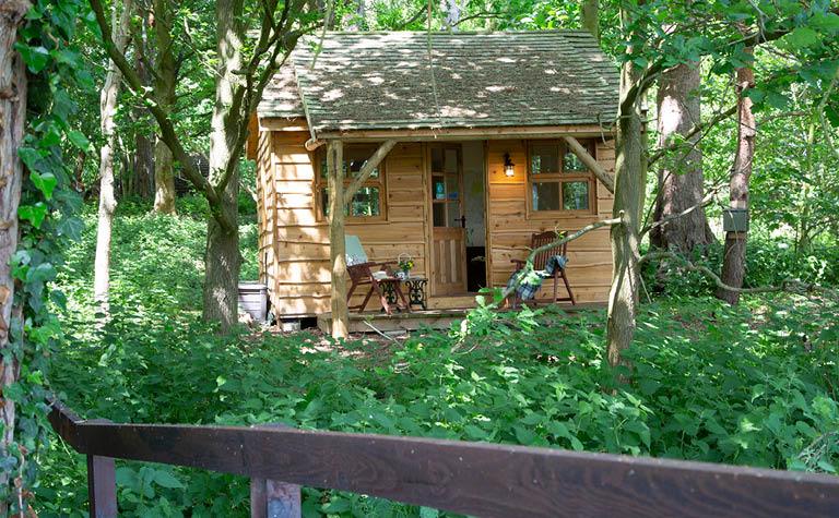 Cedar Lodge - Exterior